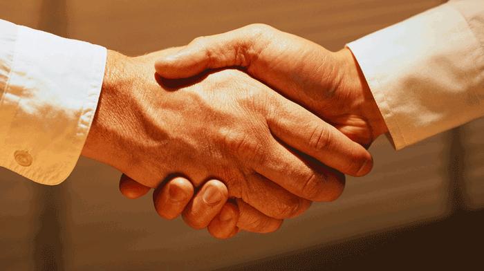 Meet and Greet handshake