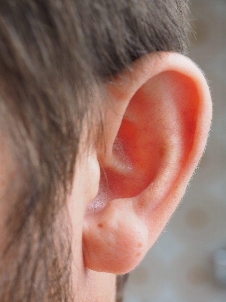ear-1355649_1920